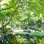 日本の写真を写真集にアップしました。