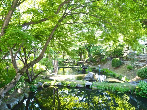 東日本 写真集