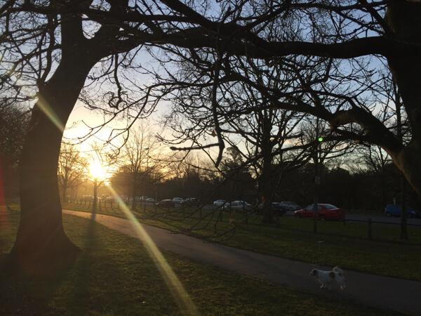 夕焼けニュージーランド