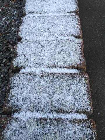 ニュージーランド 積雪