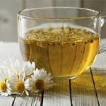 カモミールの花言葉・効能・ティーの作り方から美味しい飲み方まで伝えます